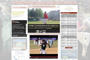 Useful widgets and tools for you to manage your baseball website.