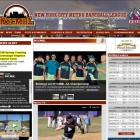 Your baseball website professionally designed.