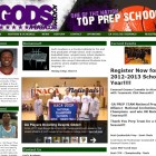 Your basketball website professionally designed.