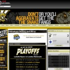 Your hockey website professionally designed.