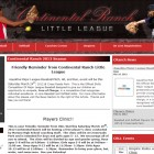 Your sports website professionally designed.